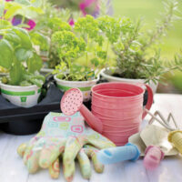 Colorful gardening tools and supplies available at Wallace Lumber Company