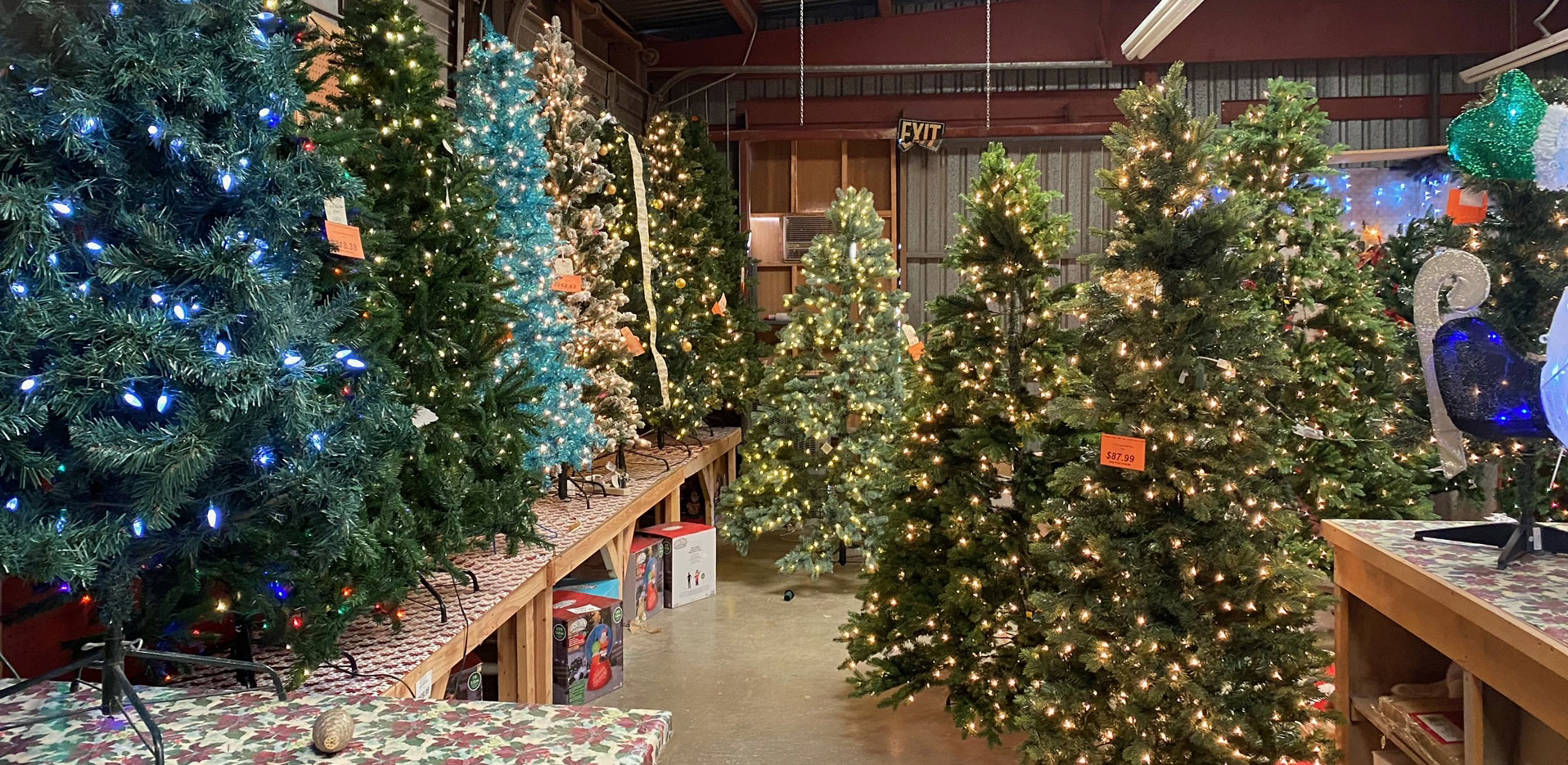 Beautiful Christmas Trees available at Wallace Lumber Company